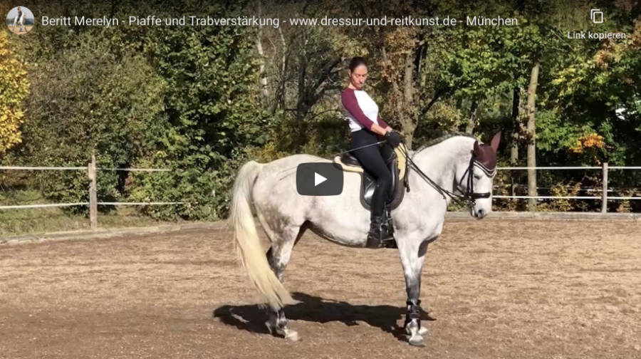 Klassische Dressur in München - Beritt Merlen - Piaffe und Trabverstärkung - Video