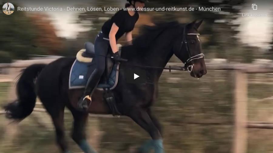 Klassische Dressur in München - Reitstunde Victoria - Dehnen, Lösen, Loben - Video