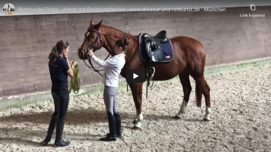 Klassische Dressur in München - Reitstunde Felipa- Arbeit mir Problempferden - Video