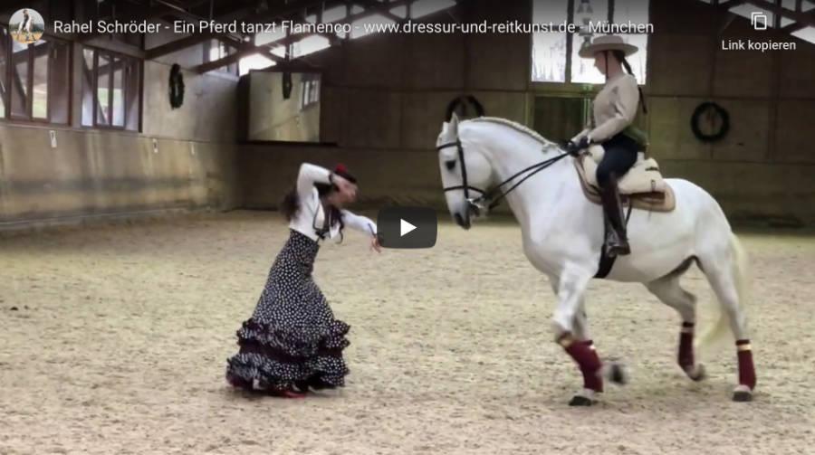 Klassische Dressur in München - Ein Pferd tanzt Flamenco - Video